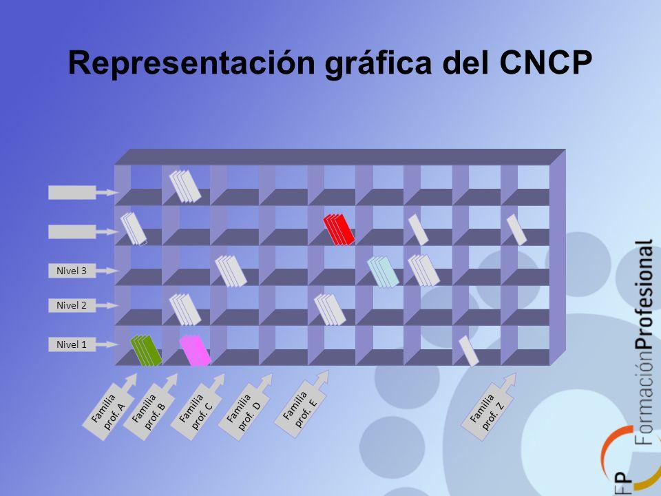 Representación gráfica del CNCP