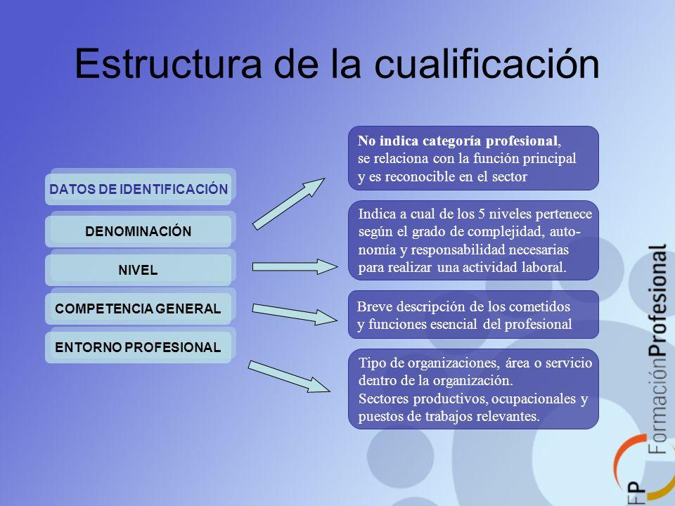 Estructura de la cualificación