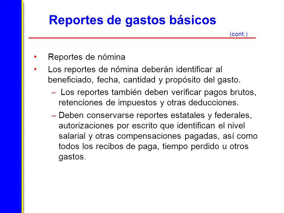 Reportes de gastos básicos