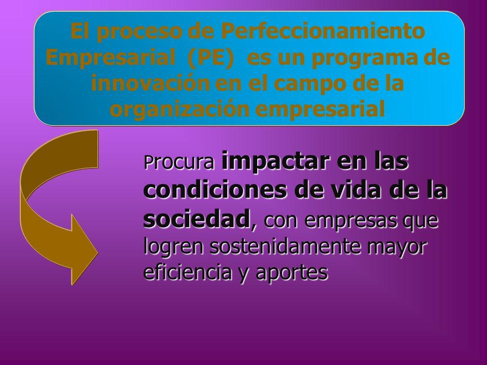 El proceso de Perfeccionamiento Empresarial (PE) es un programa de innovación en el campo de la organización empresarial