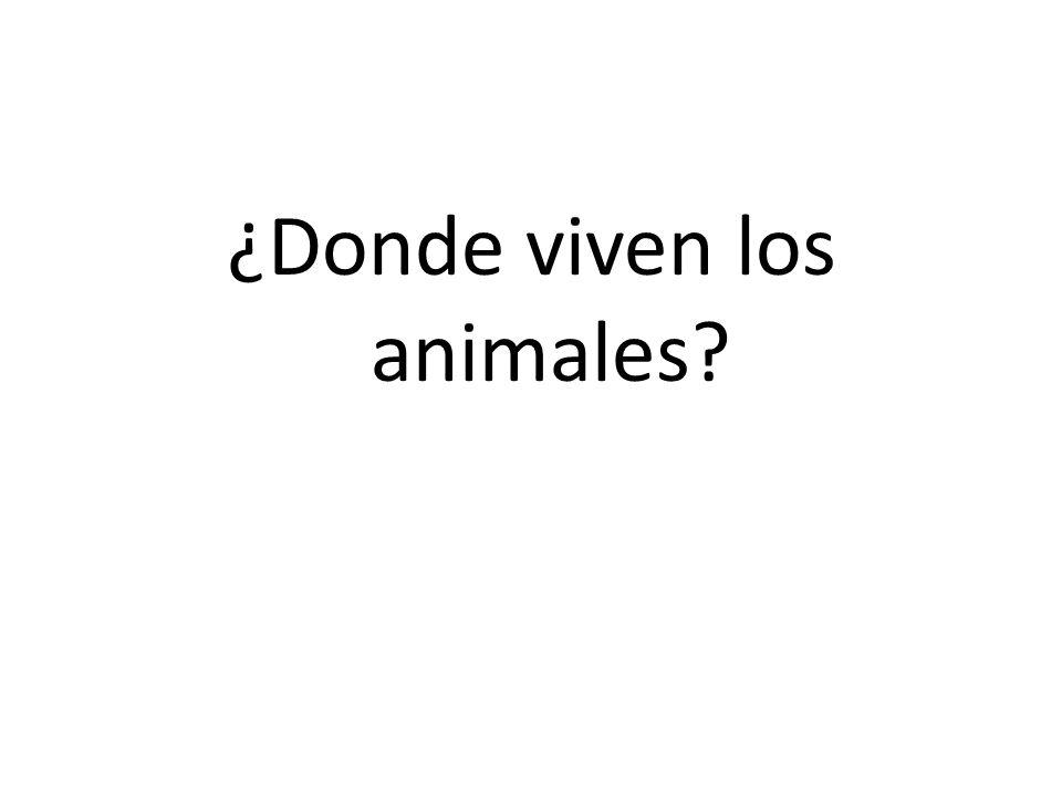 ¿Donde viven los animales
