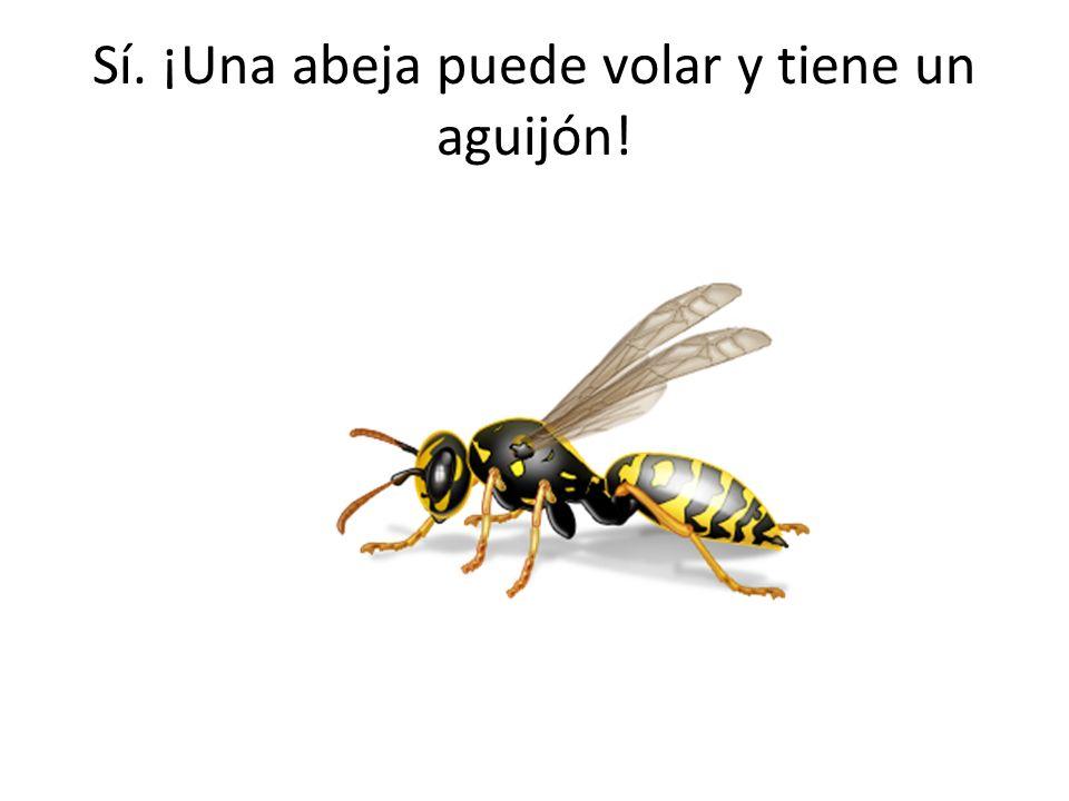 Sí. ¡Una abeja puede volar y tiene un aguijón!