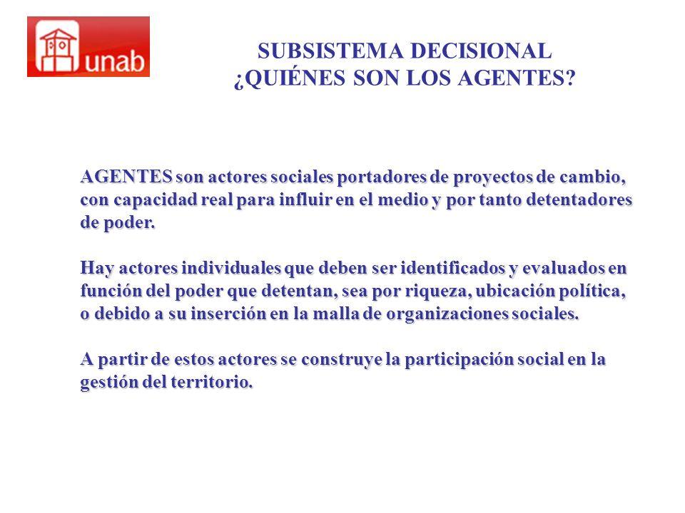 SUBSISTEMA DECISIONAL ¿QUIÉNES SON LOS AGENTES