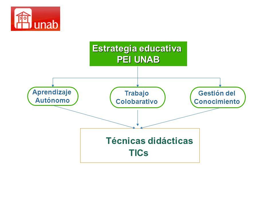 Estrategia educativa PEI UNAB