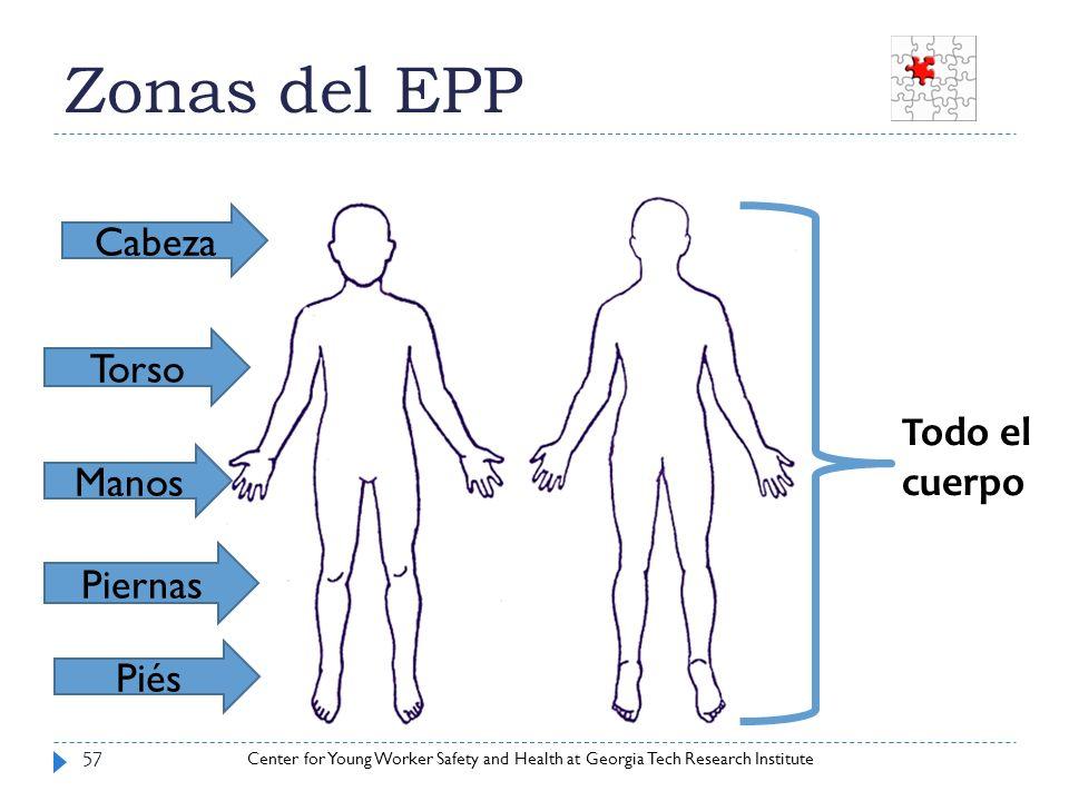 Zonas del EPP Cabeza Torso Todo el cuerpo Manos Piernas Piés