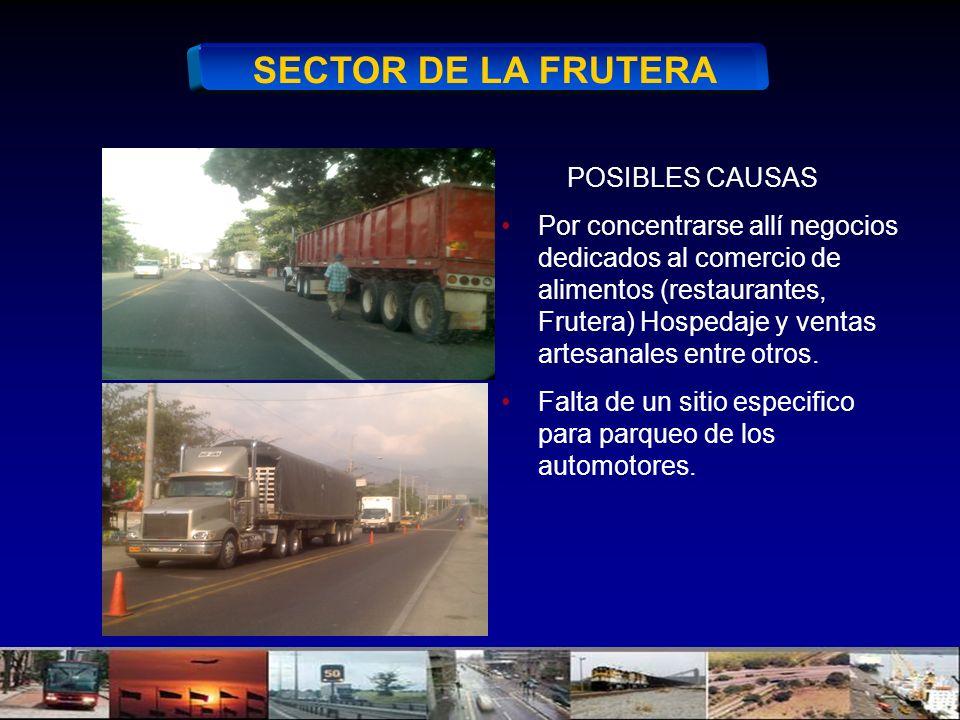 SECTOR DE LA FRUTERA POSIBLES CAUSAS