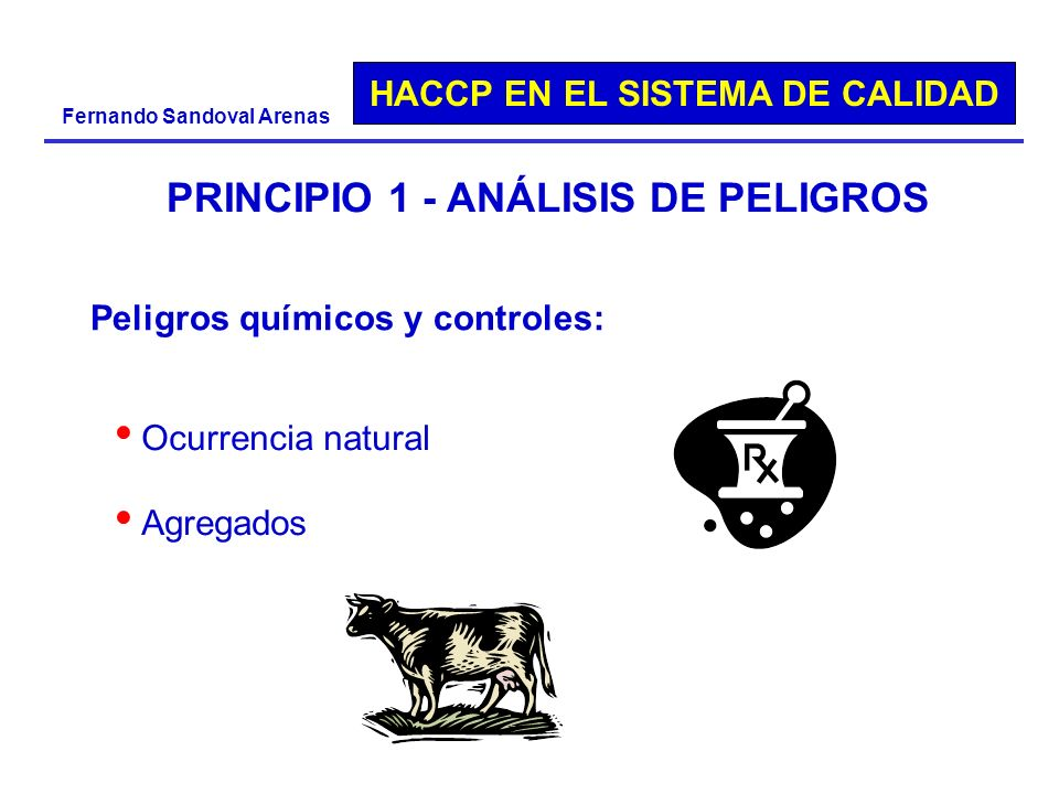 PRINCIPIO 1 - ANÁLISIS DE PELIGROS