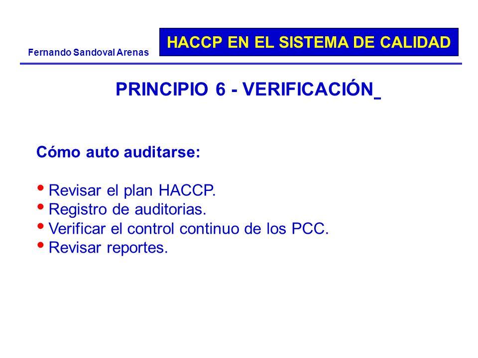 PRINCIPIO 6 - VERIFICACIÓN