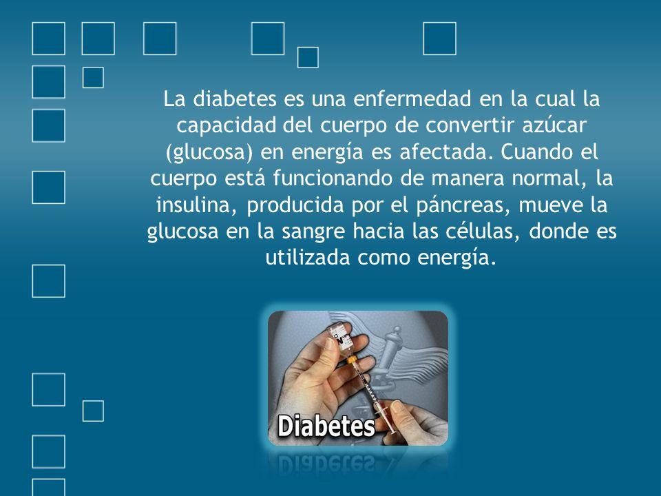 La diabetes es una enfermedad en la cual la capacidad del cuerpo de convertir azúcar (glucosa) en energía es afectada.