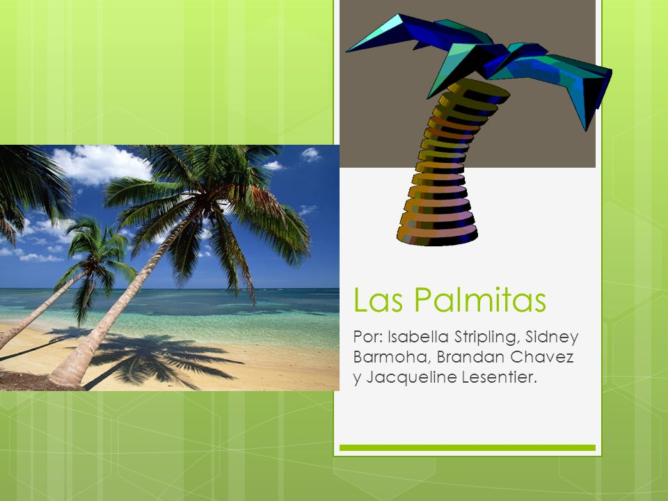Las Palmitas Por: Isabella Stripling, Sidney Barmoha, Brandan Chavez y Jacqueline Lesentier.