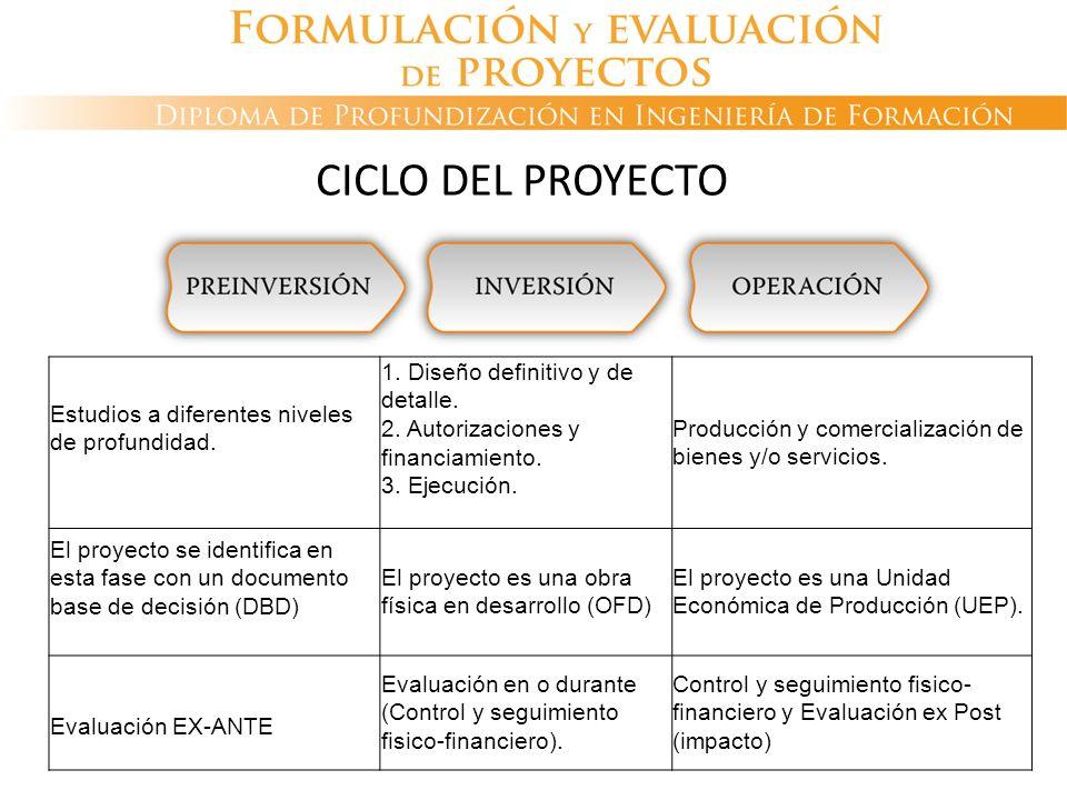 CICLO DEL PROYECTO Estudios a diferentes niveles de profundidad.