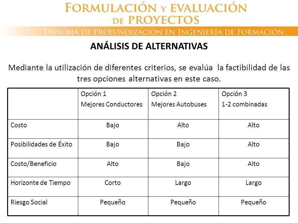 ANÁLISIS DE ALTERNATIVAS Mediante la utilización de diferentes criterios, se evalúa la factibilidad de las tres opciones alternativas en este caso.