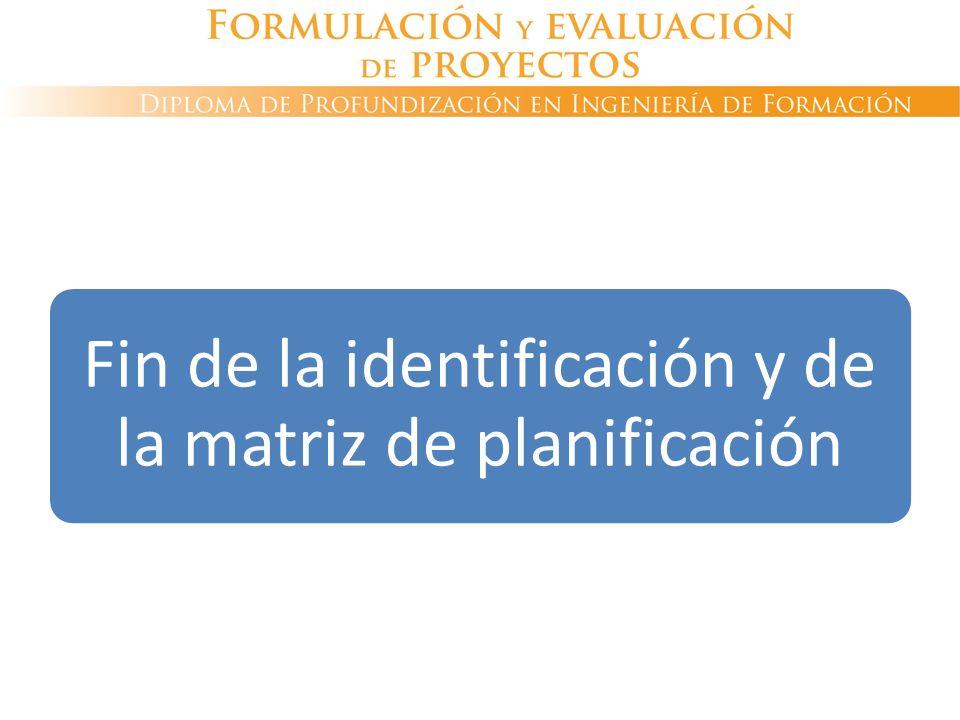 Fin de la identificación y de la matriz de planificación