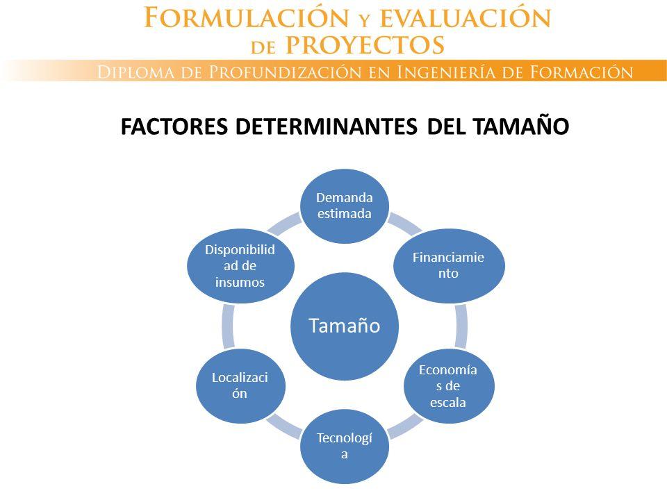 FACTORES DETERMINANTES DEL TAMAÑO