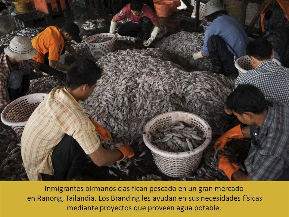Inmigrantes birmanos clasifican pescado en un gran mercado