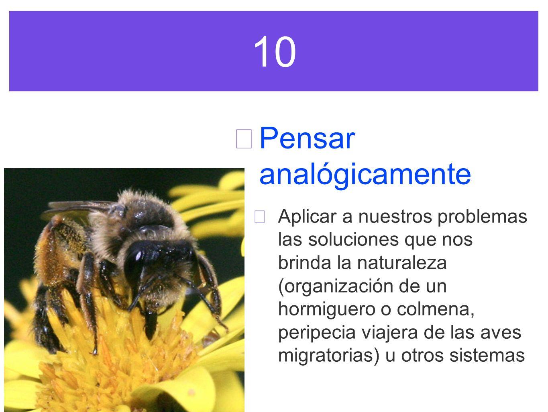 10 Pensar analógicamente