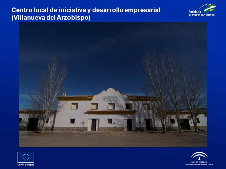 Centro local de iniciativa y desarrollo empresarial (Villanueva del Arzobispo)