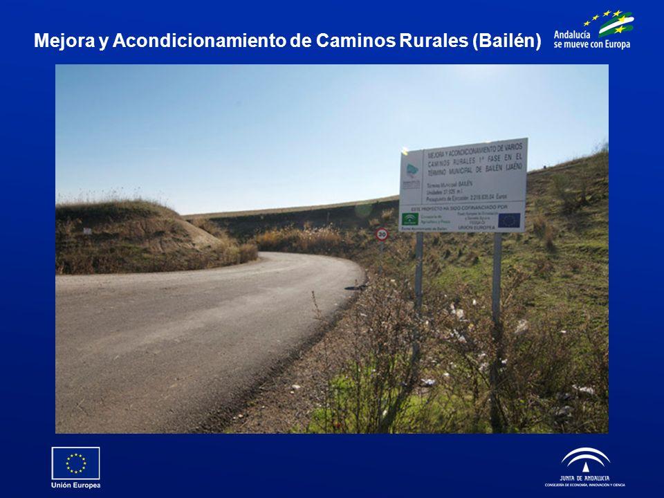 Mejora y Acondicionamiento de Caminos Rurales (Bailén)