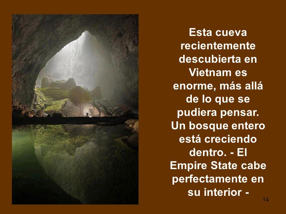 Esta cueva recientemente descubierta en Vietnam es enorme, más allá de lo que se pudiera pensar.