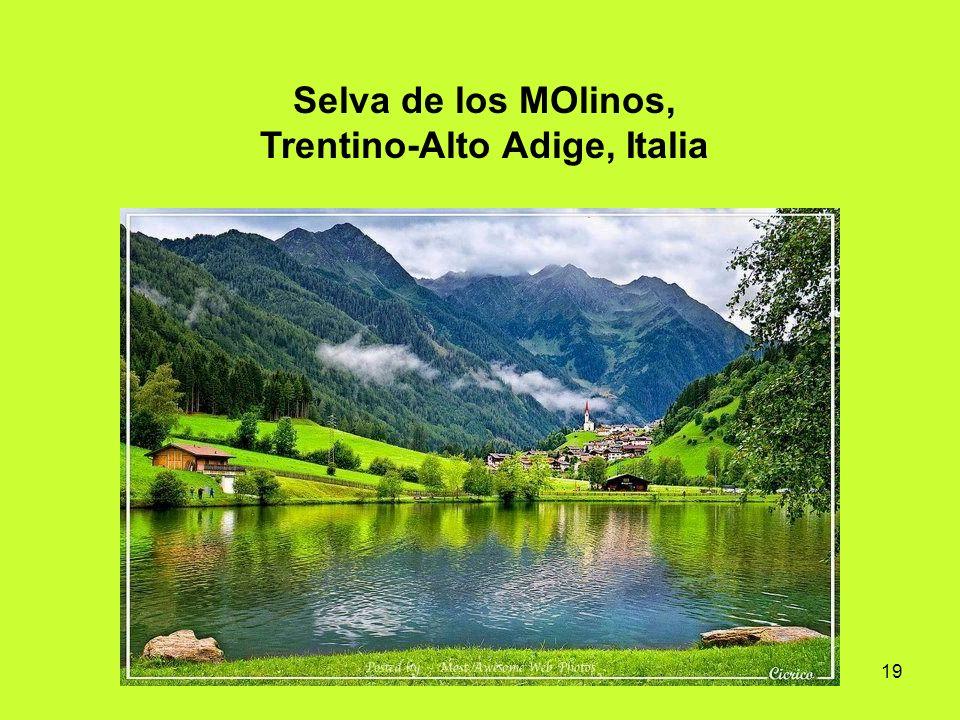 Selva de los MOlinos, Trentino-Alto Adige, Italia