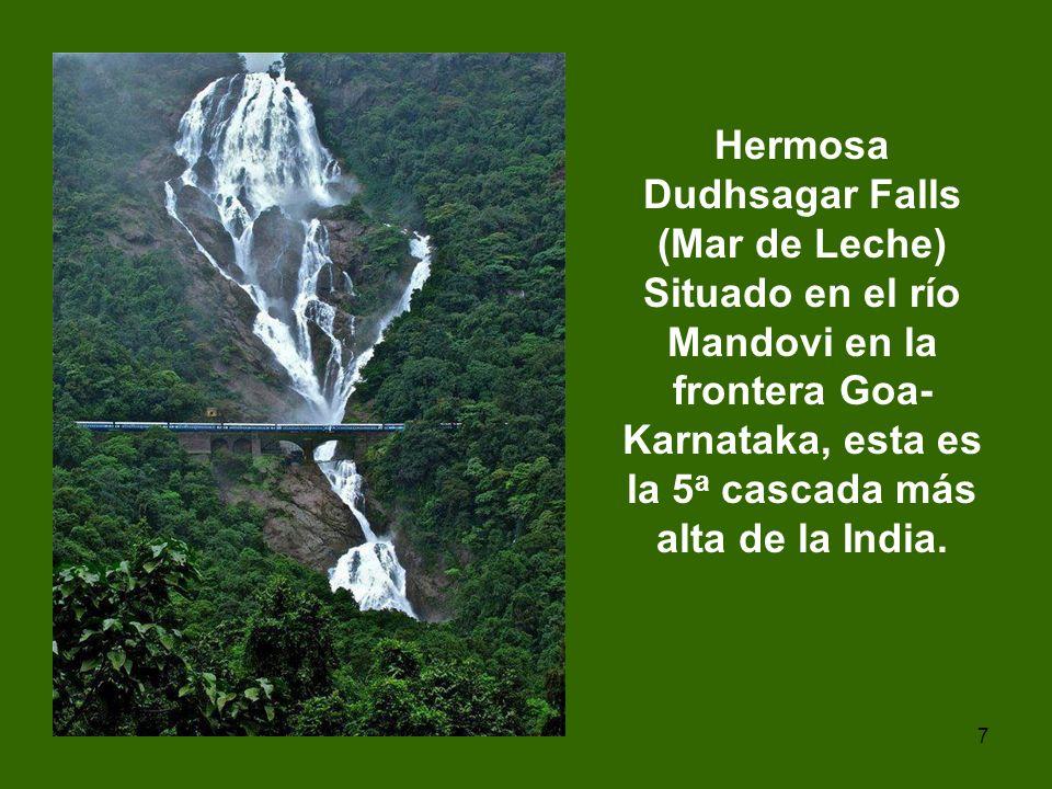 Hermosa Dudhsagar Falls (Mar de Leche) Situado en el río Mandovi en la frontera Goa-Karnataka, esta es la 5a cascada más alta de la India.