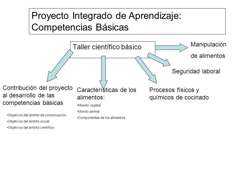 Proyecto Integrado de Aprendizaje: Competencias Básicas