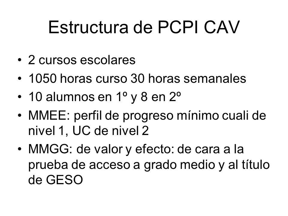 Estructura de PCPI CAV 2 cursos escolares