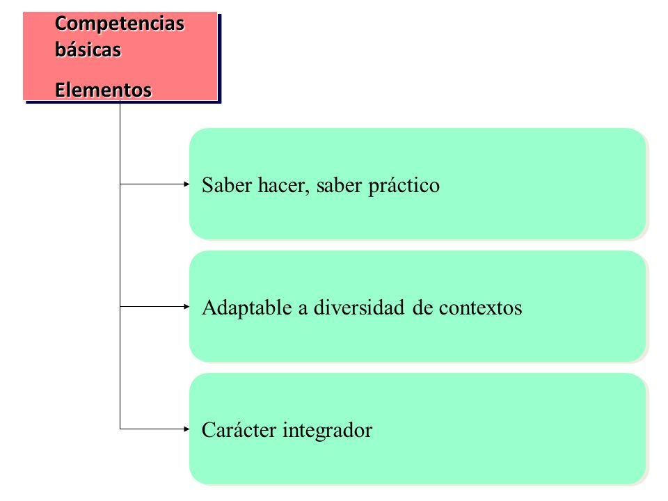 Competencias básicas Elementos. Saber hacer, saber práctico. Adaptable a diversidad de contextos.