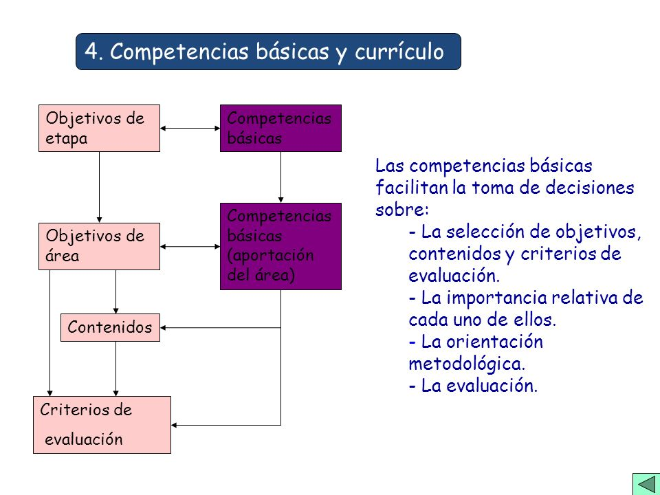 4. Competencias básicas y currículo