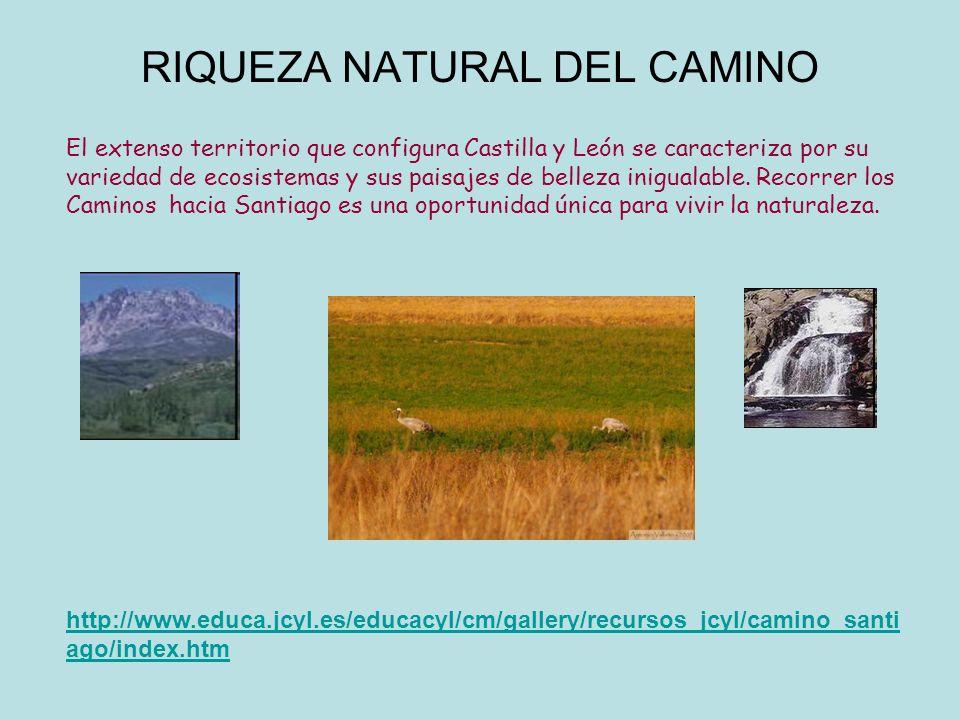RIQUEZA NATURAL DEL CAMINO