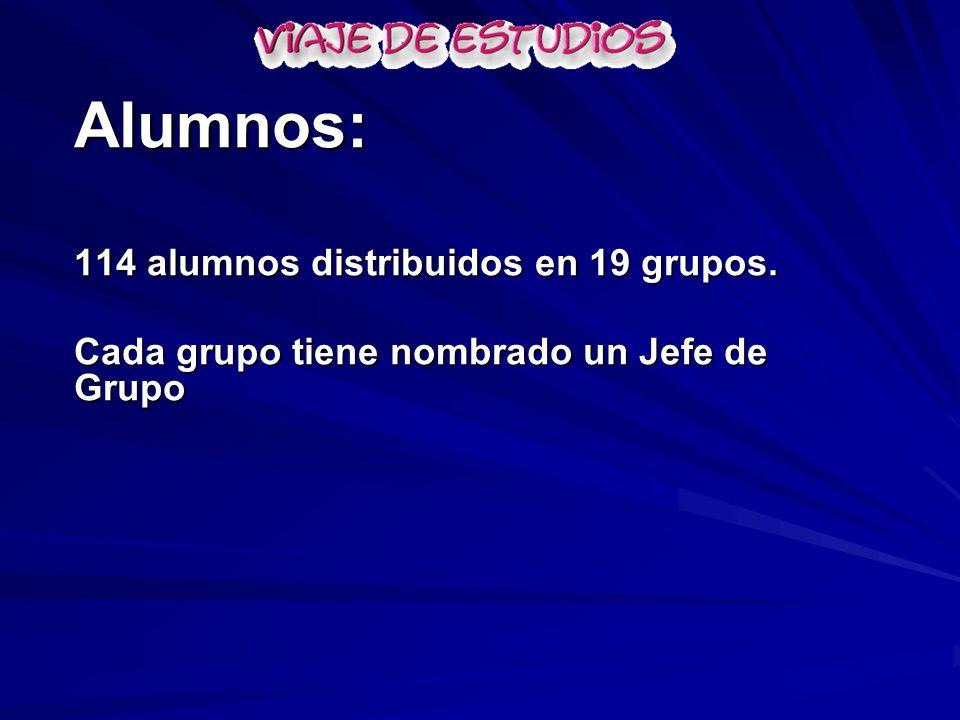 Alumnos: 114 alumnos distribuidos en 19 grupos.