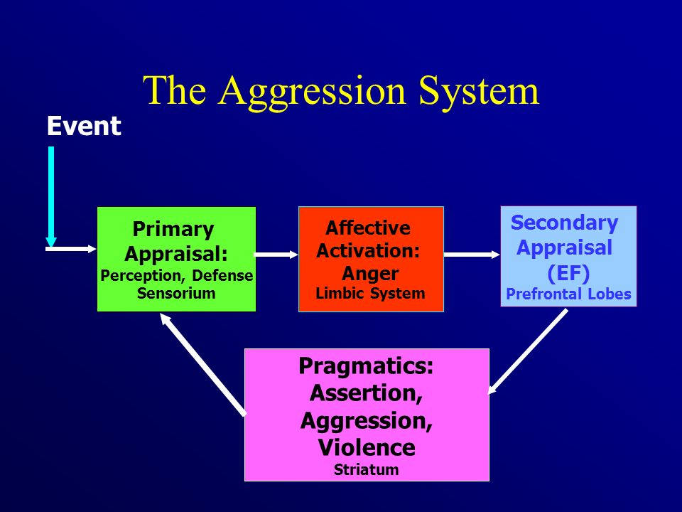 The Aggression System Event Pragmatics: Assertion, Aggression,