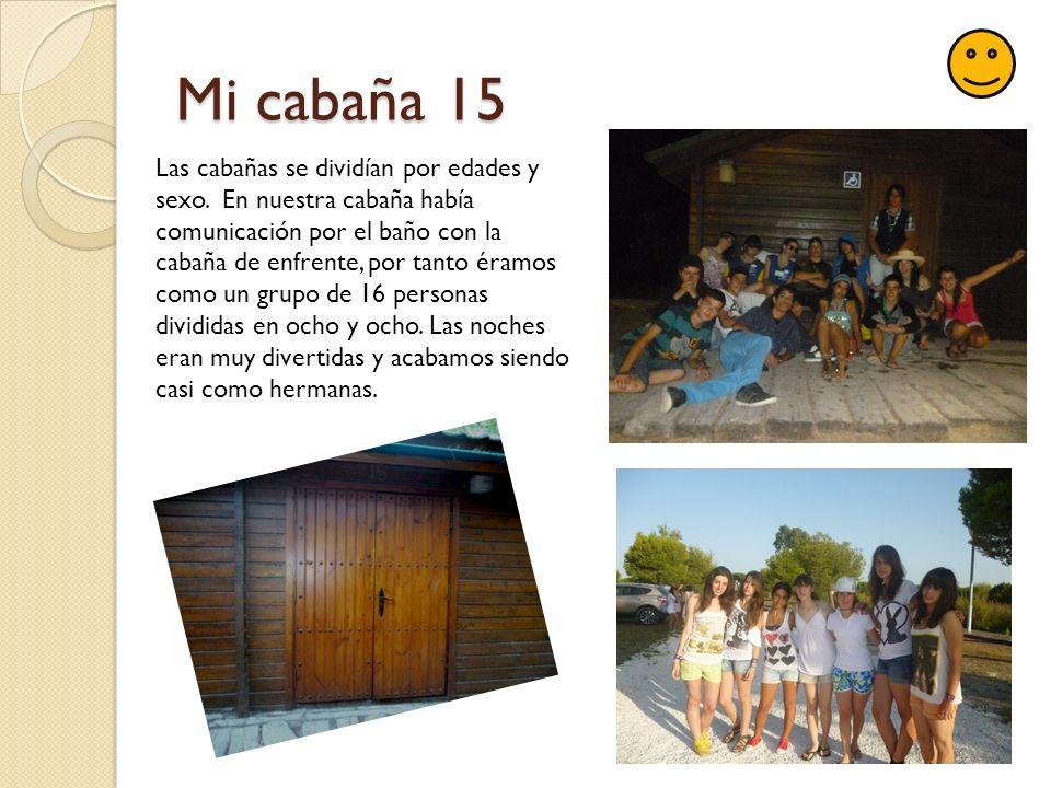 Mi cabaña 15