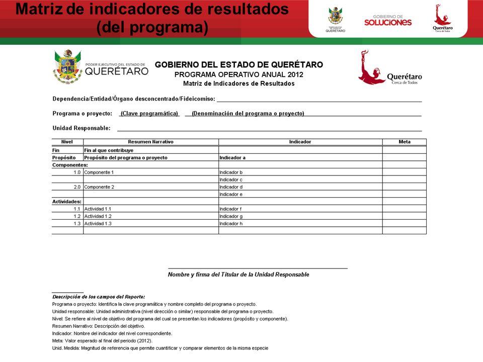 Matriz de indicadores de resultados (del programa)