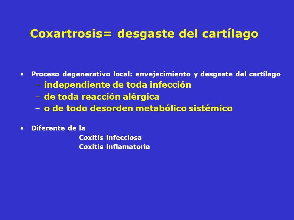 Coxartrosis= desgaste del cartílago
