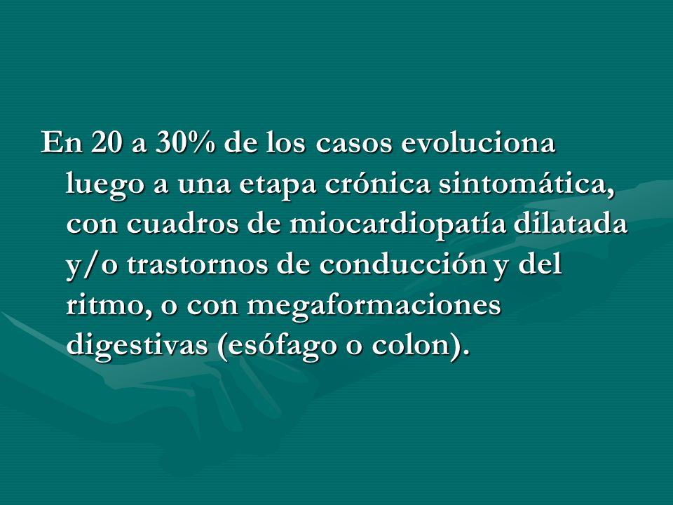 En 20 a 30% de los casos evoluciona luego a una etapa crónica sintomática, con cuadros de miocardiopatía dilatada y/o trastornos de conducción y del ritmo, o con megaformaciones digestivas (esófago o colon).