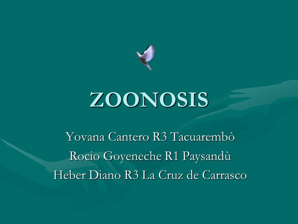 ZOONOSIS Yovana Cantero R3 Tacuarembò Rocio Goyeneche R1 Paysandù