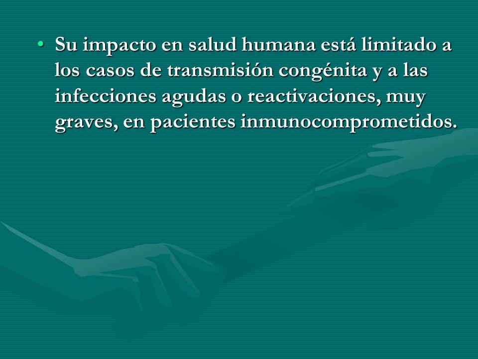 Su impacto en salud humana está limitado a los casos de transmisión congénita y a las infecciones agudas o reactivaciones, muy graves, en pacientes inmunocomprometidos.