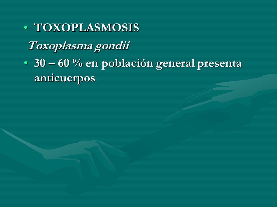 TOXOPLASMOSIS Toxoplasma gondii 30 – 60 % en población general presenta anticuerpos