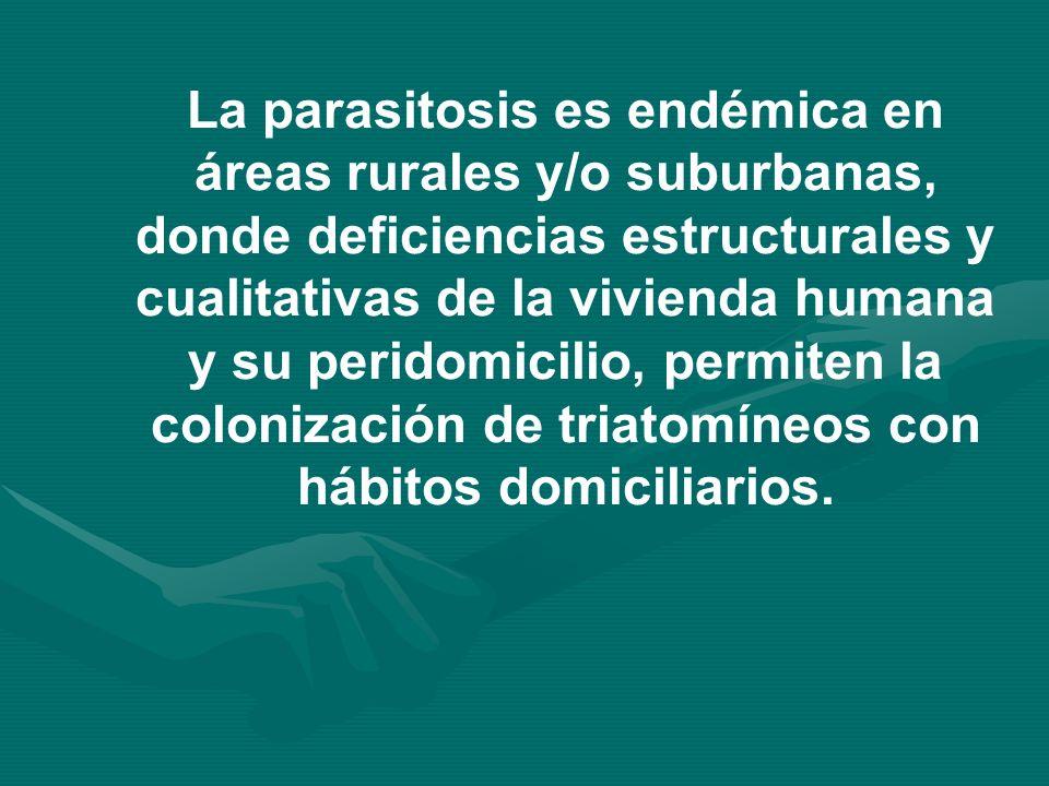 La parasitosis es endémica en áreas rurales y/o suburbanas, donde deficiencias estructurales y cualitativas de la vivienda humana y su peridomicilio, permiten la colonización de triatomíneos con hábitos domiciliarios.
