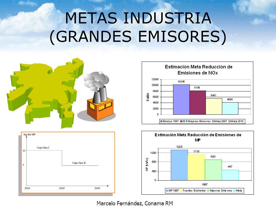 METAS INDUSTRIA (GRANDES EMISORES)