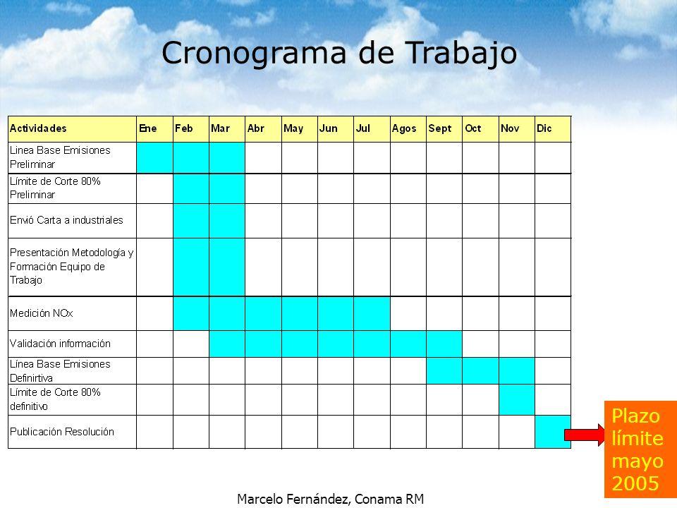 Cronograma de Trabajo Plazo límite mayo 2005