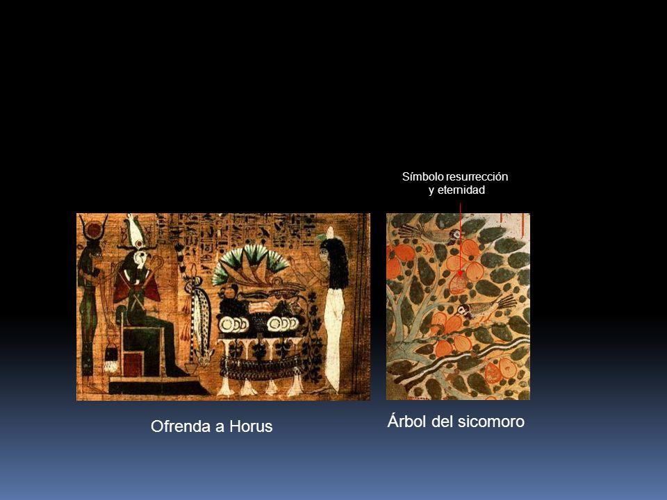 Símbolo resurrección y eternidad Árbol del sicomoro Ofrenda a Horus