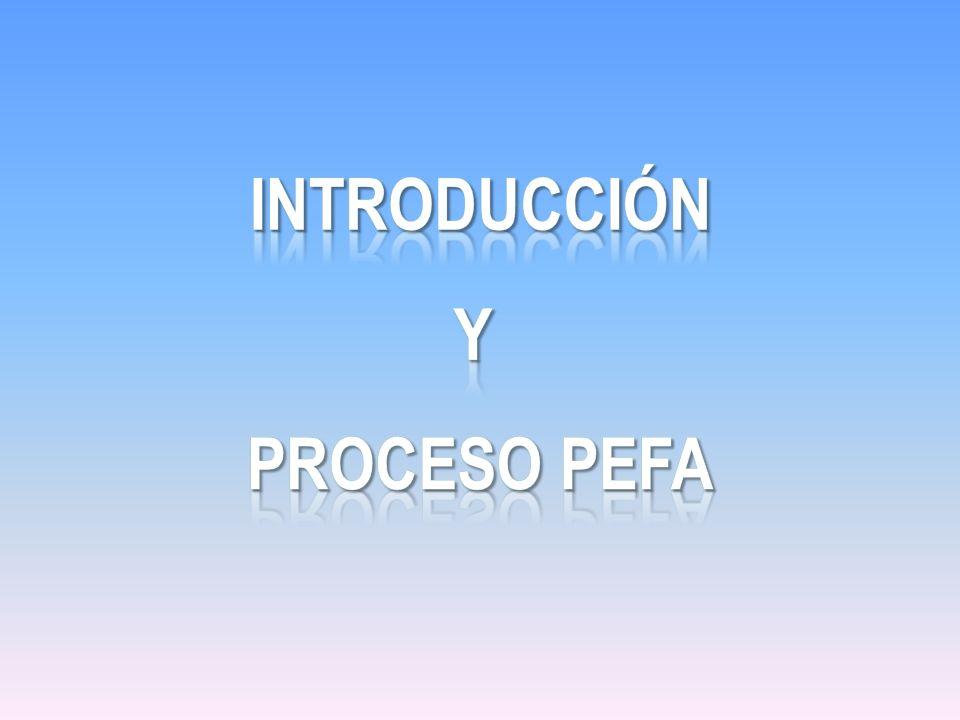 Introducción Y Proceso pefa