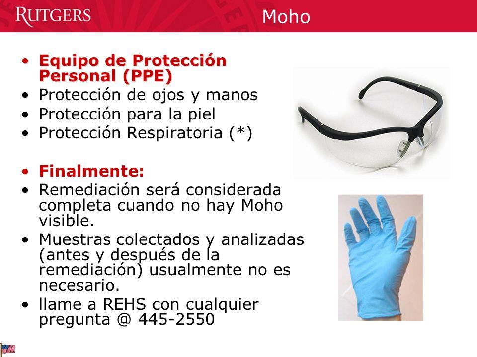 Moho Equipo de Protección Personal (PPE) Protección de ojos y manos