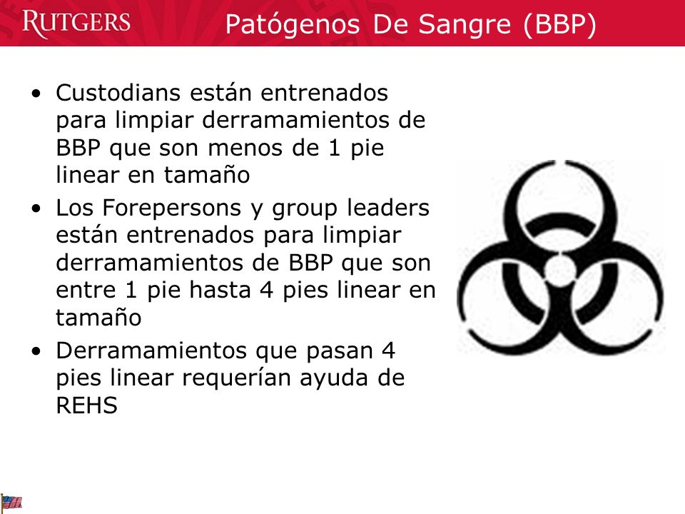 Patógenos De Sangre (BBP)
