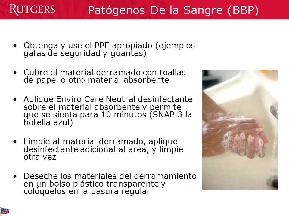 Patógenos De la Sangre (BBP)