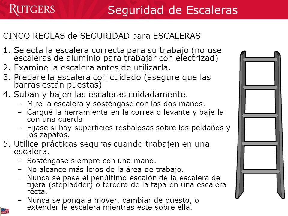 Seguridad de Escaleras