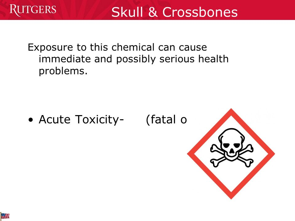 Skull & Crossbones Acute Toxicity- (fatal or toxic)
