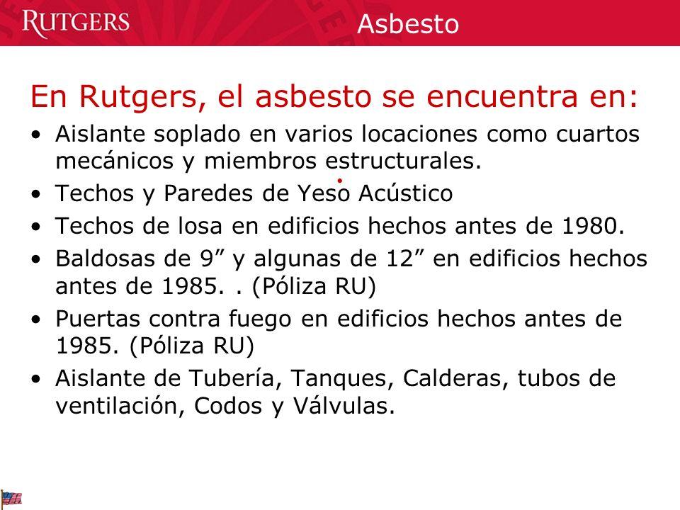En Rutgers, el asbesto se encuentra en: